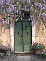 Wisteria Over The Door